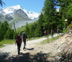 Chamonix Mountain Walking