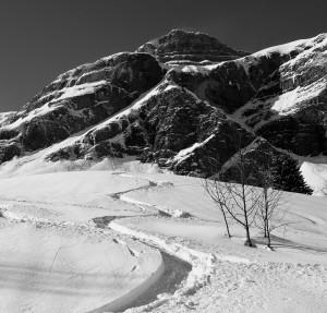 Superb Velvet Fresh Tracks Below The NE Face of Les Quatre Tetes