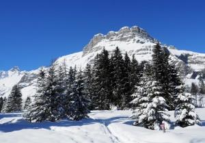 North East Face Of Les Quatre Tete